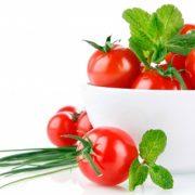 کاشت داشت و برداشت گوجه آموزش کامل کاشت گوجه فرنگی