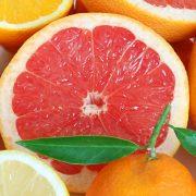 آشنایی کامل با میوه گریپ فروت ، نگهداری و تکثیر آن