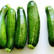 کدو سبز ، روش کاشت ، بیماری ها و آفات