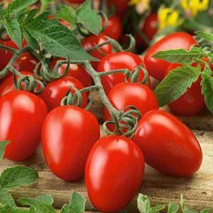 بذر گوجه فرنگی کشیده سوپر چف – بذر آمریکایی