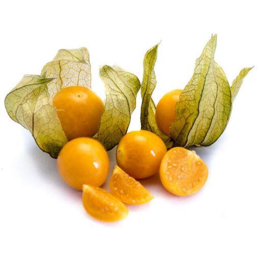 بذر فیسالیس نارنجی درجه یک – عمده و خرده