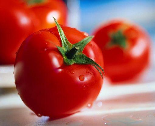 بذر گوجه فرنگی گرد آریا – درجه یک آمریکایی
