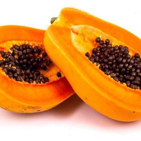 فروش پاپایا زرد پاکوتاه با میوه های درشت
